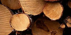 hout-bewerken-300x150
